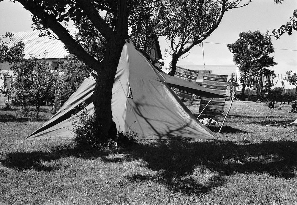 Tältläger på Odvalds