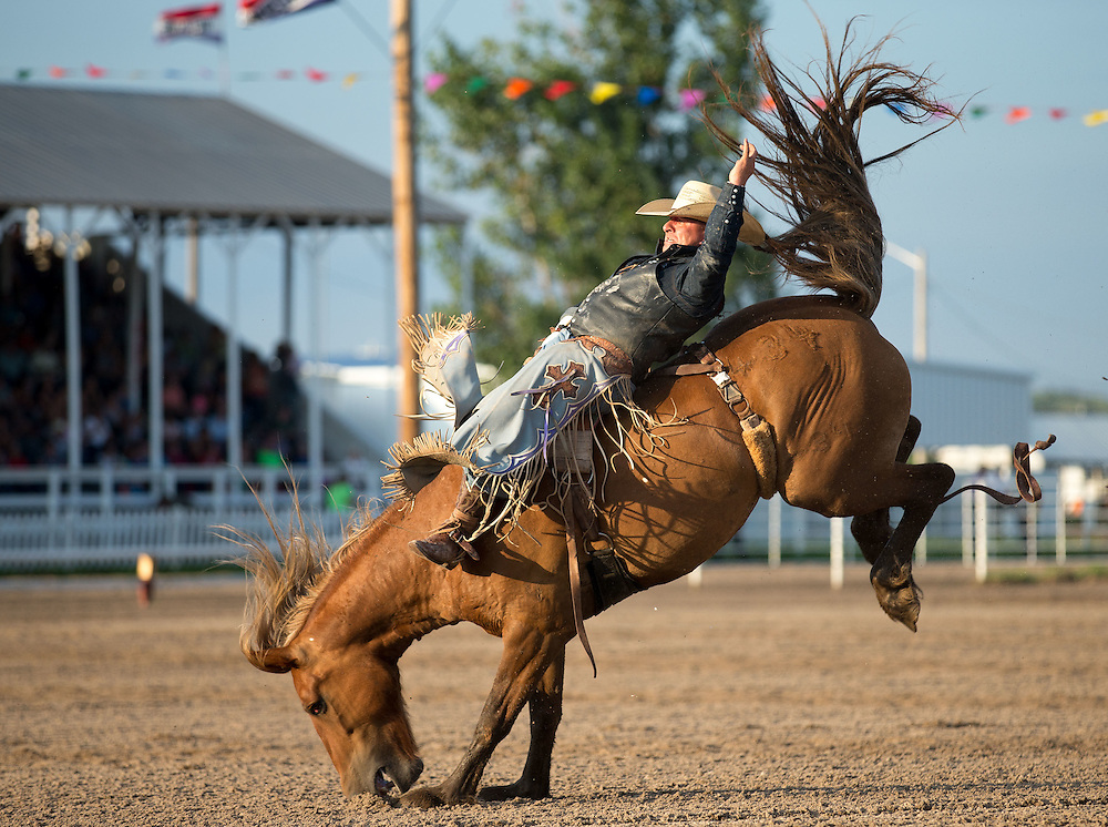 Scotty NeSmith?? competes in bareback riding at Nebraska's Big Rodeo on Saturday, July 30, 2016, in Burwell.