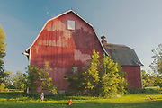 Moon Over Red Gambrel Barn With Children Playing Near Oberlin, Ohio, Red Barns, Shade Trees, Toys, Midwest, Heartland America, Green Pastures, Wild Flowers