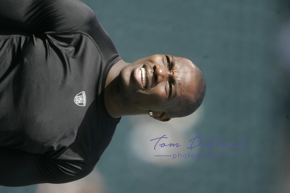 Philadelphia Eagles Terrell Owens plays in a game against the Baltimore Ravens<br /> (Tom DiPace)