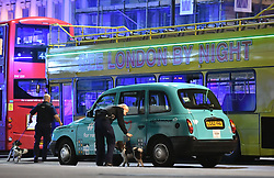 """Police sniffer dogs on London Bridge as police are dealing with a """"major incident"""" at London Bridge."""