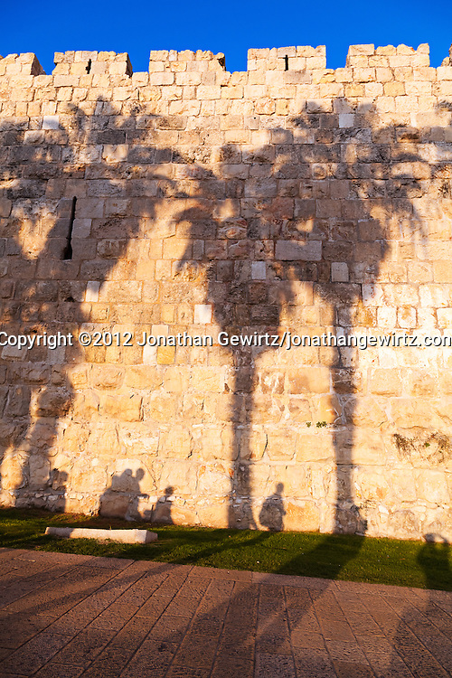 People and palm trees cast shadows on a section of the stone exterior wall of the Old City of Jerusalem.