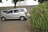 A man, bare feet, carries a load of long grass in Central Jakarta, Indonesia.<br /> Un homme pieds nus tire une charge de plantes et d'herbes, Centre de Djakarta 2009