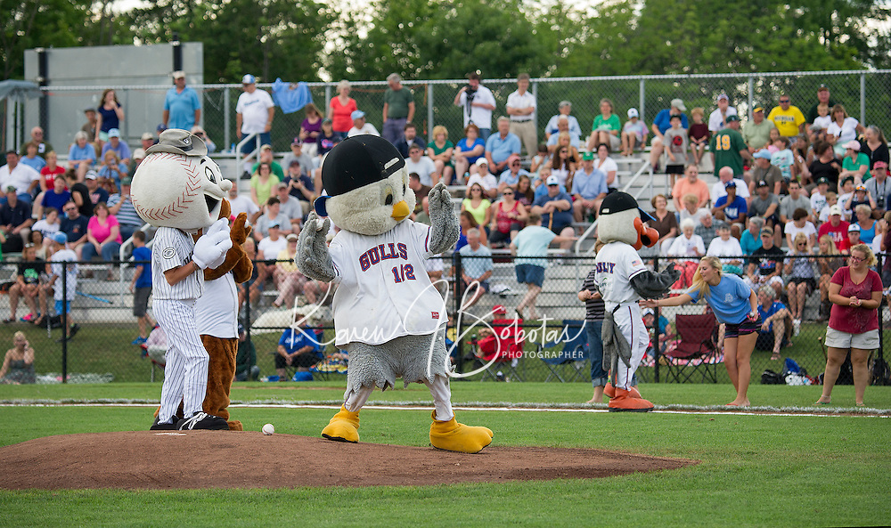 Joining the Laconia Muskrat Mascot is Westy from the Danbury Westerners, Gully and Gully Jr from the Newport Gulls to throw the first pitches before the start of the 2013 New England Collegiate All Star Game at Robbie Mills Field Sunday evening.  (Karen Bobotas/for the Laconia Daily Sun)