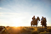 Pair of Gaucho's on horseback and dog, Huechahue Ranch, Northern Patagonian Lake District, Argentina, South America
