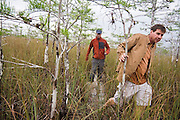 Everglades specialist guide Garl Harrold leads client Zach Podell-Eberhardt through flooded prairie grasses to an alligator hole in Everglades National Park, Florida.