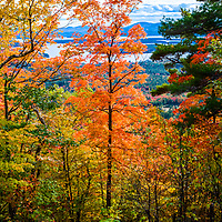 A trail through the woods in autumn overlooking Lake Winnipesaukee.<br />