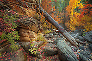 Oak Creek Canyon, Harding Springs, autumn, Sedona, AZ