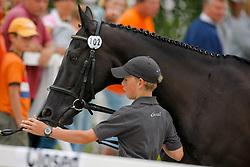 Kenis Pieter, BEL, Rocky 1329 <br /> European Pony Championships Avenches 2008<br /> © Hippo Foto - Dirk Caremans<br /> 27/07/2008