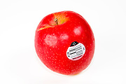 Cutout of a red Pink Lady or Cripps Pink apple on white background. Originally bred by John Cripps at the Western Australia Department of Agriculture