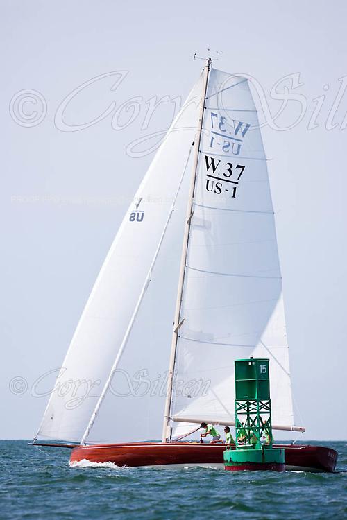 Race Horse sailing in the Opera House Cup Regatta.