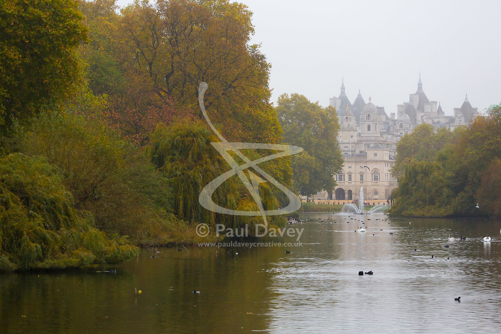London, October 26 2017. Waterfowl and autumnal trees emerge from the mist as London wakes up to a cool, misty autumn morning. © Paul Davey