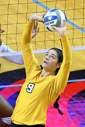 23 November 2017:  Brittany Anderson sets during a college women's volleyball match between the Valparaiso Crusaders and the Illinois State Redbirds in the Missouri Valley Conference Tournament at Redbird Arena in Normal IL (Photo by Alan Look)