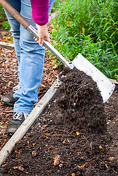 Mulching a bed in the vegetable garden with compost