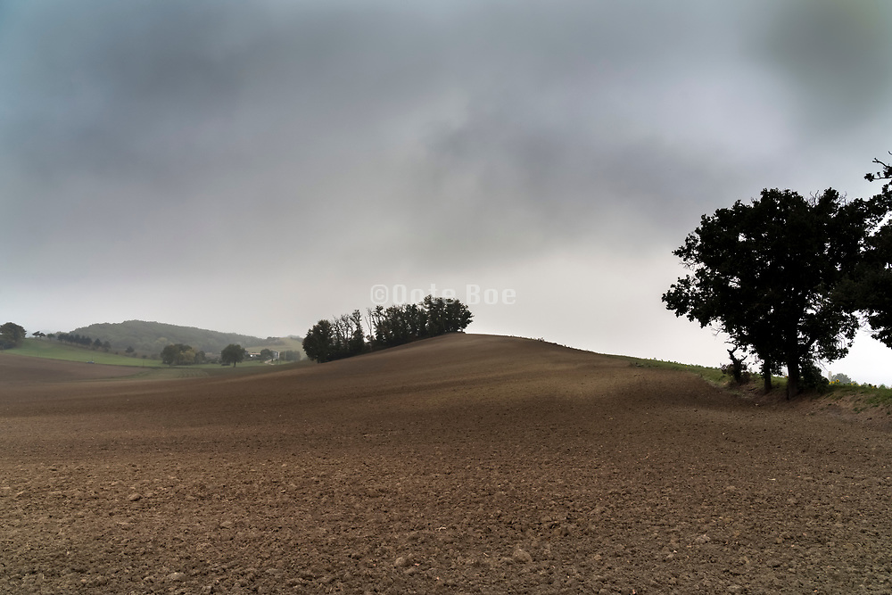 morning fog in rural agricultural landscape during autumn season