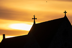 © Licensed to London News Pictures. 13/02/2021. London, UK. A bird stands on a cross on St John's Church on Blackheath Common during sunrise. Freezing temperatures are expected for most of England and yellow weather warnings for ice are in place for parts of the UK. Photo credit: George Cracknell Wright/LNP
