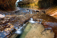 The Subway canyon formation Left Fork of North Creek, Zion National Park Utah USA