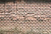 Shingles on Wall