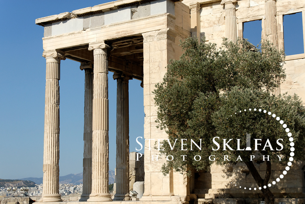 Acropolis. Athens. Greece. View of an olive tree and the elegant North porch Ionic columned portico of the Erechtheion on the Acropolis summit. Built between 420 and 406 BC, the elegant and unusually shaped Temple was designed to incorporate a number of ancient sanctuaries and cults including that of Athena and her olive tree and Poseidon-Erechtheus. The Erechtheion Temple was part of the monumental rebuilding and transformation of the Acropolis buildings during the time of Perikles. The Acropolis of Athens and its monuments are a UNESCO World Heritage Site.