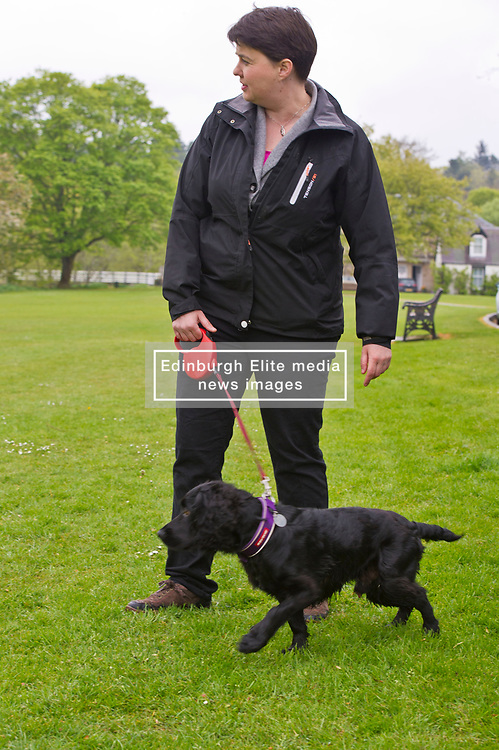 Pictured: Ruth Davidson and her dog Wilson<br /> <br /> Scottish Tory leader Ruth Davidson and Scottish Secretary David Mundell took to the campaign trail in West Linton today.<br /> <br /> Ger Harley   EEm 13 May 2017