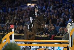 Bluman Mark, Luigi d Eclipse<br /> Young Stallions 5 years of age<br /> Vlaanderens Kerstjumping Memorial Eric Wauters<br /> © Dirk Caremans<br /> 27/12/2016
