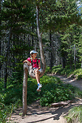 Girl sitting in crook of tree on hiking trail