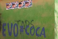 Evo means coca