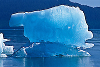 An iceberg floating in the waters of Holkham Bay, Southeast Alaska.  The blue color is created by the thickness, density and the internal alignment of the large ice crystals, which causes greater refraction of light and absorbs the red spectrum.  Therefore, the visible light is blue or blue-green.