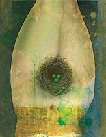 Upside down woman with nest yoni. Photo based mixed medium image.