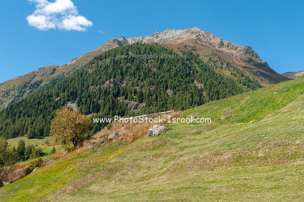 Alpine landscape. Photographed From Guarda, Graubuenden, Switzerland