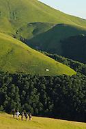 Ecotourists in the Alpine grasslands in the Tarku mountains Natura 2000 site, Southern Carpathians, Romania, Rewilding Europe site