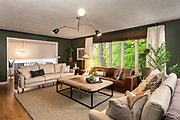 Photo by Brandon Alms of a modern living room space