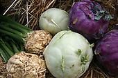 Vegetables - grønnsaker
