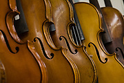 Violins in a rack in Beekman's shop.