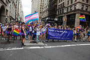 New York, NY - 25 June 2017. New York City Heritage of Pride March filled Fifth Avenue for hours with groups from the LGBT community and it's supporters. Marchers from the Ackerman Institute's Gender & Family Project, which provides services for families of gender-expansive and transgender children and adolescents.