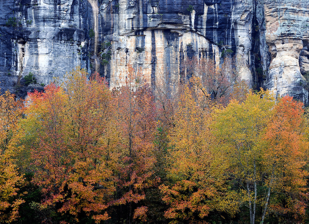 Fall color and Roark Bluff, Buffalo National River