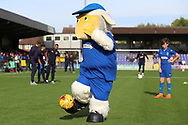 Haydon the Womble shooting at goal during the EFL Sky Bet League 1 match between AFC Wimbledon and Portsmouth at the Cherry Red Records Stadium, Kingston, England on 13 October 2018.