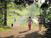 """Shelby Farms Dog Park, Memphis, Tennessee. MSN Living's website named Memphis among the Top 20 travel destinations in the world, making it the second Top 20 ranking for Memphis this year. In December, National Geographic Traveler named the city one of the 20 """"must-see places"""" in the world."""