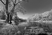 Tranquil river black and white photograph of Psel River in Ukraine.