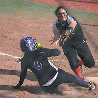 Miyamura Patriot Katlynn Silva (6) slides in to home plate safe when Gallup Bengal Ottum Jones (13) misses the ball during the game at Frod Canyon Park in Gallup Friday.