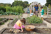 Isy Large and her children: Joseph, 12, Edward, 12 and Charlotte, 6 in their vegetable garden at Hares Farm CREDIT: Vanessa Berberian for The Wall Street Journal<br /> UKFARM-Hares Farm