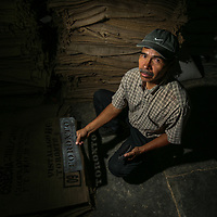 Francisco Noe Guerrero, the coffee mill administrator at Los Pinos coop, marks sacks using a stencil that says TORONTO for an export to Canada. Cooperativa Los Pinos is a certified Fairtrade producer based in El Salvador.