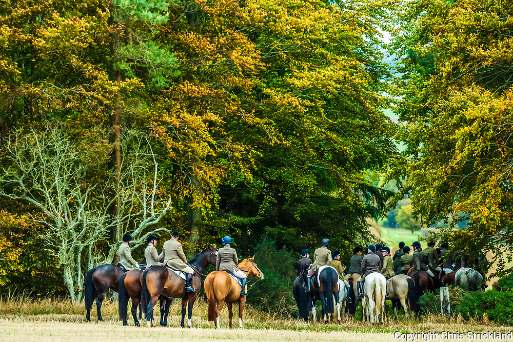 Ancrum, Jedburgh, Scottish Borders, UK. 6th October 2018. The Duke of Buccleuch Hunt flushing foxes to guns amongst autumn colours near Ancrum village in the Borders.