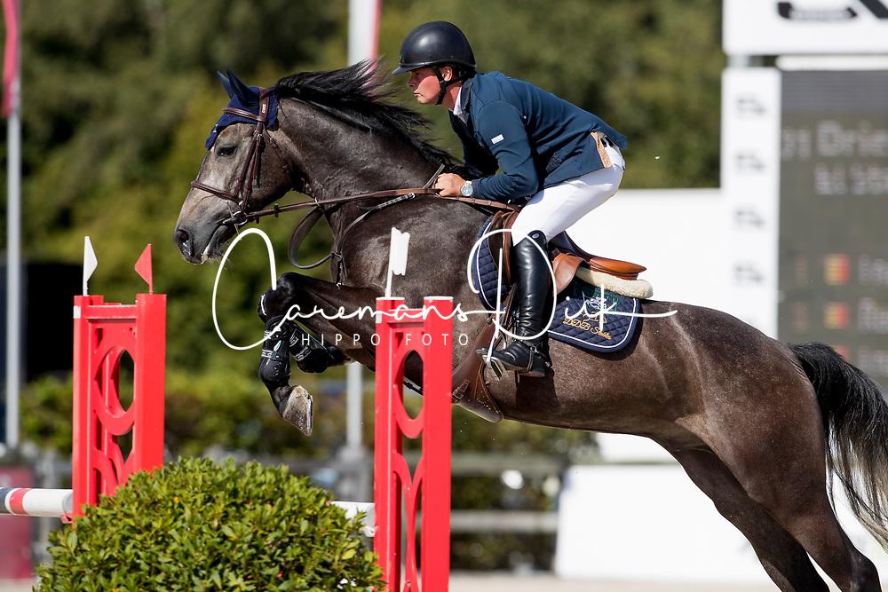 De Bock Dries, BEL, El Star van't Ameldonk Z<br /> BK Young Horses 2020<br /> © Hippo Foto - Sharon Vandeput<br /> 6/09/20