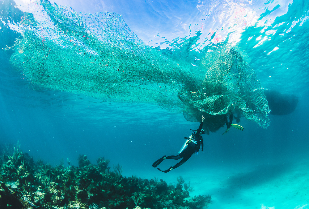 Scuba divers remove a large fishing net or ghost net from a coral reef in The Bahamas.