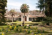 Real Gardin Botanico the Madrid Royal Botanical Gardens