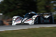 September 30-October 1, 2011: Petit Le Mans. 16 Greg Pickett, Lucas Luhr, Klaus Graf, AMR/ Lola Coupe B08, Muscle Milk-Aston Martin Racing