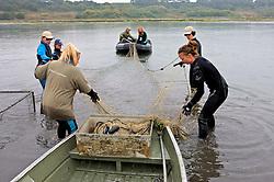Earthwatch Team Setting Nets