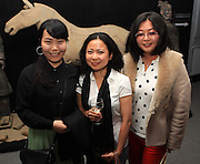 NO FEE PICTURES<br /> 3/7/14  Erin Zhang, Kit Chan and Zhu yi  at the grand opening of Terracotta Warriors (The Terracotta army of the first Emporer of China), at the Ambassador Theatre, open from the 4th July. in Dublin.Tickets on sale from Ticketmaster and venue box office. Picture: Arthur Carron
