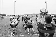 A lineout at Carmarthen Athletic RFC.